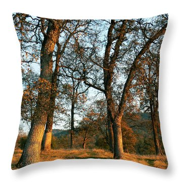 Sun Kissed Oaks Throw Pillow by Pamela Patch
