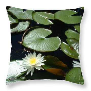 Throw Pillow featuring the photograph Sun Lovers by Mark Robbins