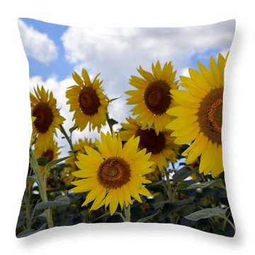 Sun Lovers Throw Pillow