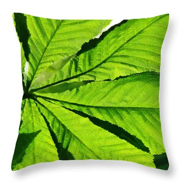 Throw Pillow featuring the photograph Sun On A Horse Chestnut Leaf by Steve Taylor