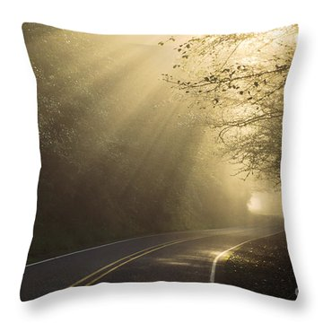 Sun Rays On Road Throw Pillow by Ron Sanford and Photo Researchers