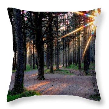 Sun Rays Throw Pillow by Sonya Kanelstrand