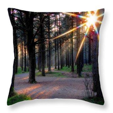 Sun Rays Throw Pillow