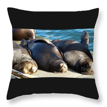 Throw Pillow featuring the photograph Sunbathing Sea Lions by Chalet Roome-Rigdon