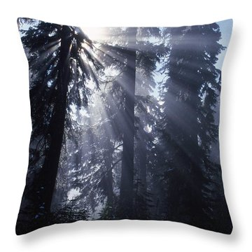 Sunbeams Through Pine Trees Throw Pillow by Natural Selection Craig Tuttle