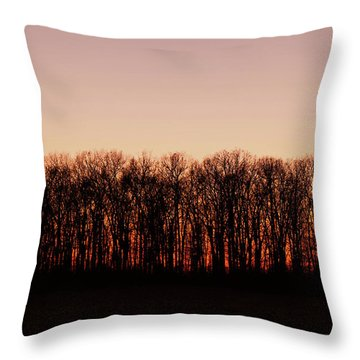 Throw Pillow featuring the photograph Sundown In Silhouette by Rachel Cohen