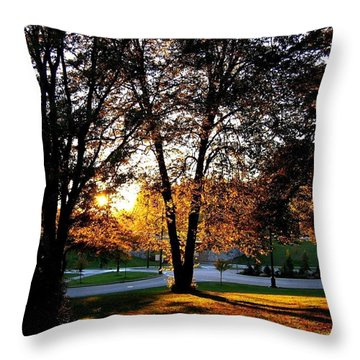 Sundown In Stanley Park Throw Pillow by Will Borden