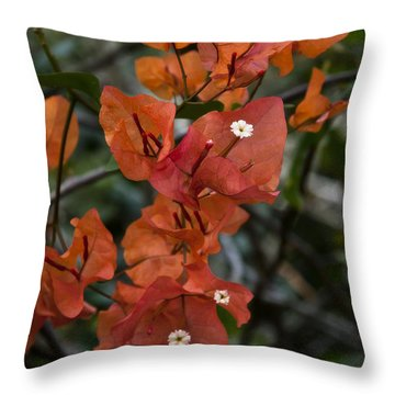 Throw Pillow featuring the photograph Sundown Orange by Steven Sparks