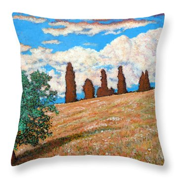 Throw Pillow featuring the painting Sundown by Tom Roderick