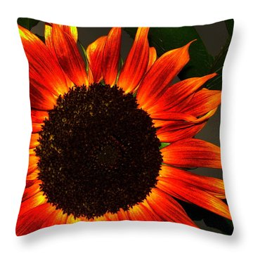Throw Pillow featuring the photograph Sunfire by Ramona Johnston