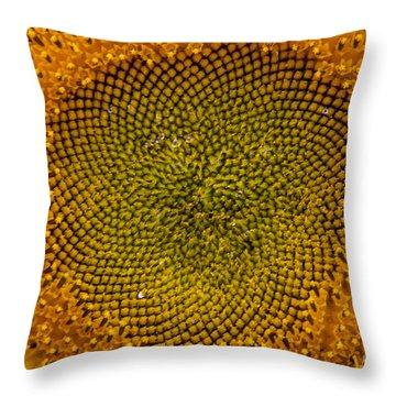 Sunflower Center Throw Pillow by Darleen Stry