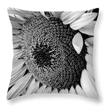Throw Pillow featuring the photograph Sunflower by Dan Wells