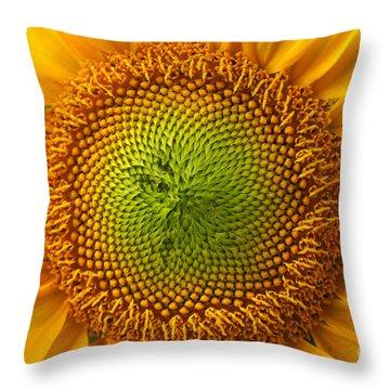 Sunflower Fantasy Throw Pillow by Benanne Stiens