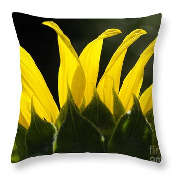Sunflower Greeting The Morning Throw Pillow
