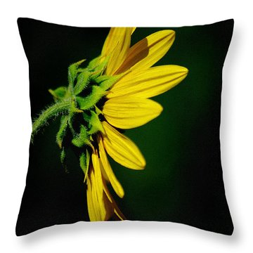 Throw Pillow featuring the photograph Sunflower In Profile by Vicki Pelham