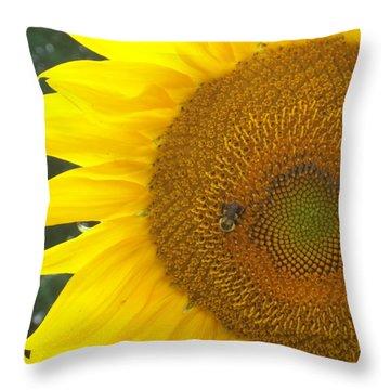 Throw Pillow featuring the photograph Sunflower by Lou Ann Bagnall