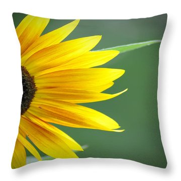 Sunflower Morning Throw Pillow by Bill Cannon