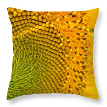 Sunflower Study 1 Throw Pillow