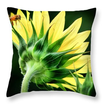 Sunflower With Bee Throw Pillow by Lynne Jenkins