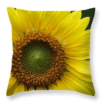 Sunflower With Insect Throw Pillow