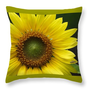 Sunflower With Insect Throw Pillow by Daniel Reed