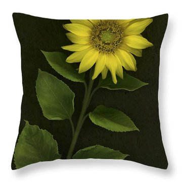 Sunflower With Rocks Throw Pillow by Deddeda