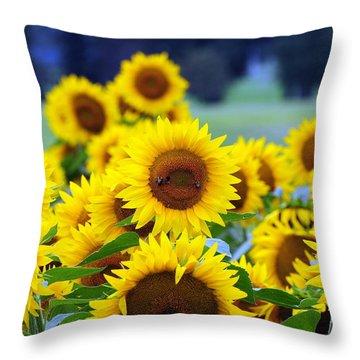Sunflowers Throw Pillow by Paul Ward