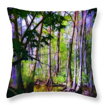 Sunlight In The Swamp Throw Pillow by Judi Bagwell