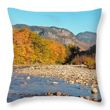 Sunlight On The Saco Throw Pillow by Geoffrey Bolte