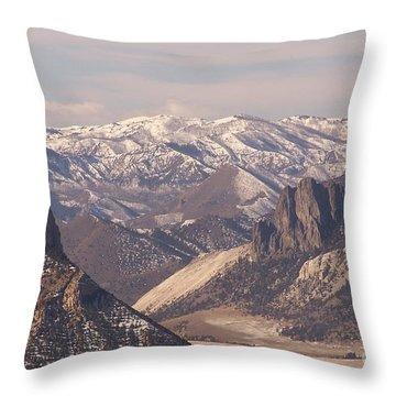 Sunlight Splendor Throw Pillow by Dorrene BrownButterfield