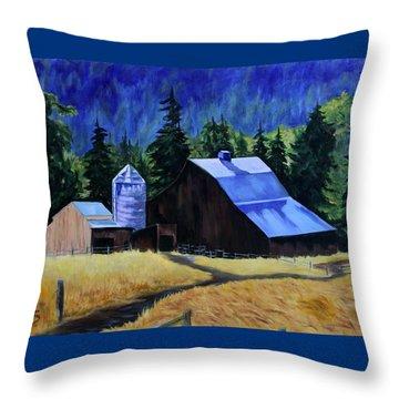 Sunlite Barn Throw Pillow