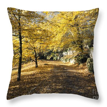 Sunny Day In The Autumn Park Throw Pillow by Michal Boubin