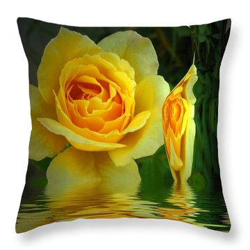 Sunny Delight And Vase 2 Throw Pillow by Joyce Dickens