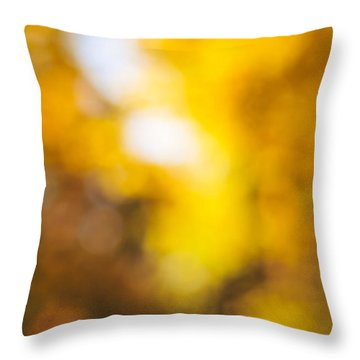 Sunny Fall Forest Throw Pillow by Elena Elisseeva