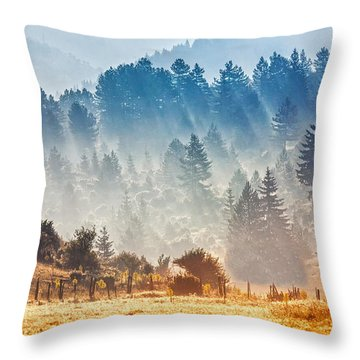 Sunny Morning Throw Pillow by Evgeni Dinev