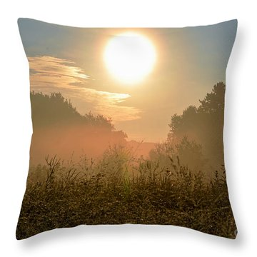 Sunny Side Up Throw Pillow by Sue Stefanowicz