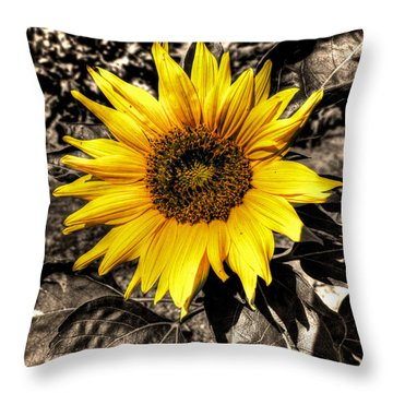 Sunny With A Chance Of Black And White Throw Pillow