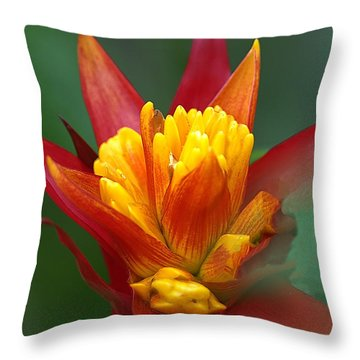 Throw Pillow featuring the photograph Sunrise - Sunset by Anne Rodkin