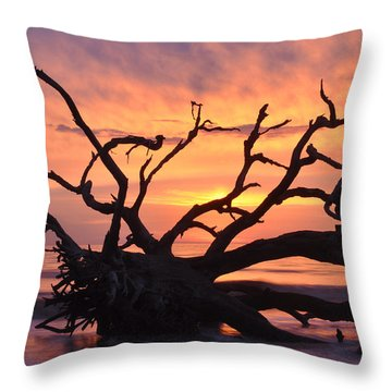 Sunrise At Driftwood Beach 6.1 Throw Pillow