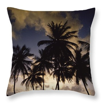 Sunrise At La Sagesse Bay Over Marquis Throw Pillow by Gerry Ellis