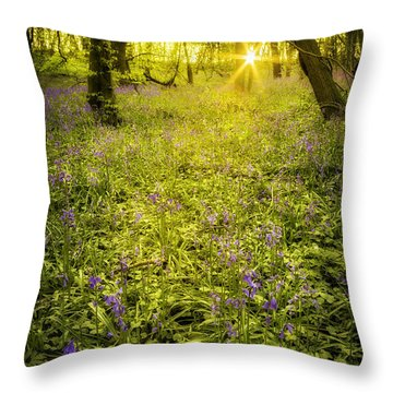 Sunrise In Bluebell Woods Throw Pillow by Amanda Elwell