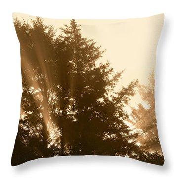 Sunrise In Sepia Throw Pillow
