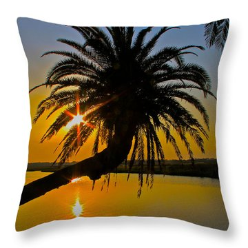 Throw Pillow featuring the photograph Sunrise On The Loop by Alice Gipson