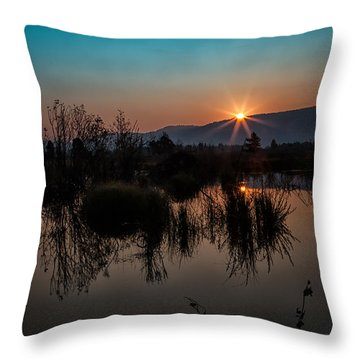 Sunrise Over The Beaver Pond Throw Pillow by Ronald Lutz
