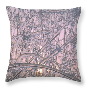 Throw Pillow featuring the photograph Sunrise Through Ice Covered Shrub by Tom Wurl