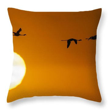 Sunset 3 Throw Pillow