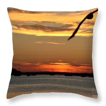 Throw Pillow featuring the photograph Coming Home by Katy Mei