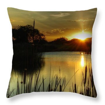 Sunset And Cattails Throw Pillow by Tam Ryan