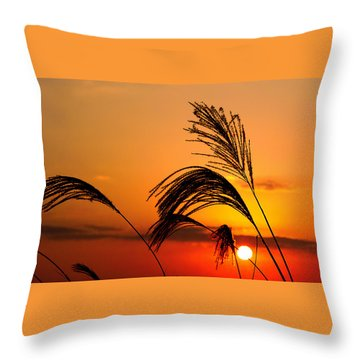 Sunset And Pampus Throw Pillow by Jocelyn Kahawai