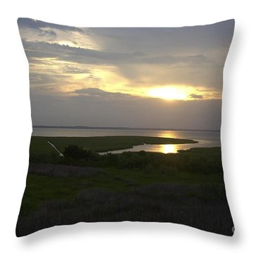 Throw Pillow featuring the photograph Sunset by Arlene Carmel